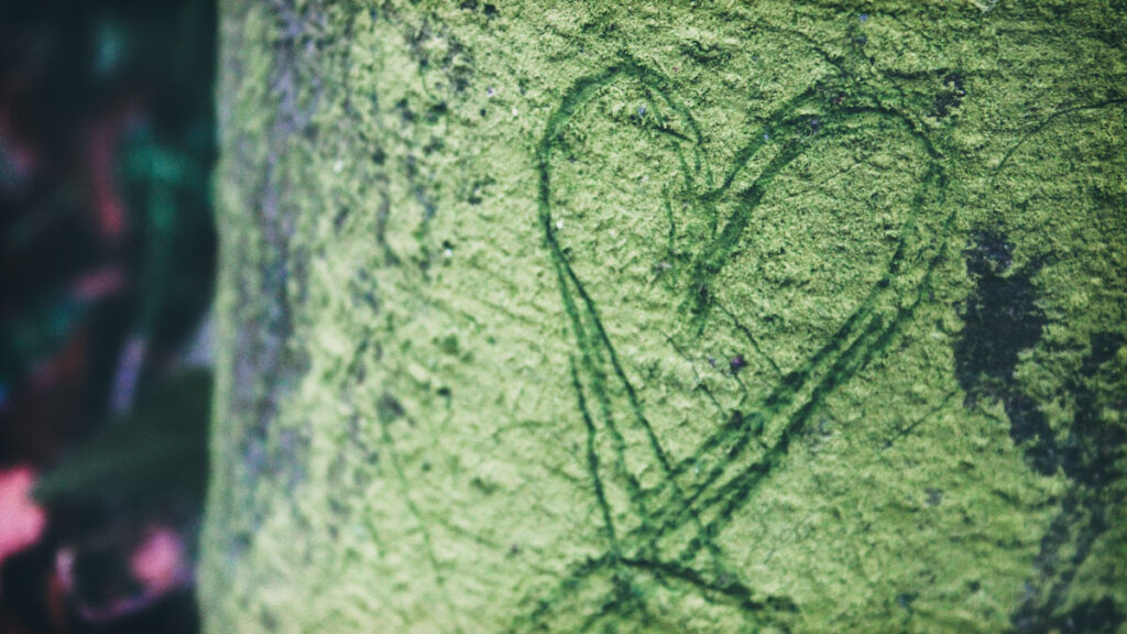 hjertechakra betydning